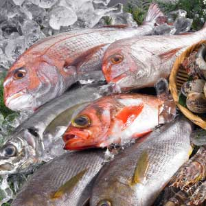 海鮮丼で美食効果